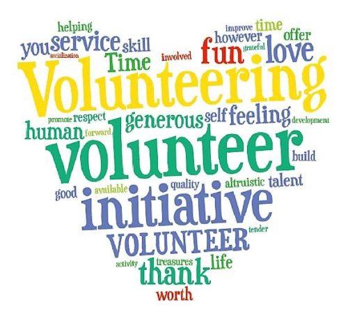 volunteer2 (2)